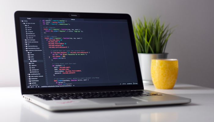 What is Custom Software Development?